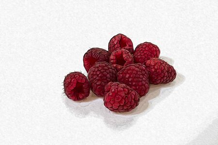 Raspberries in a white background illustration