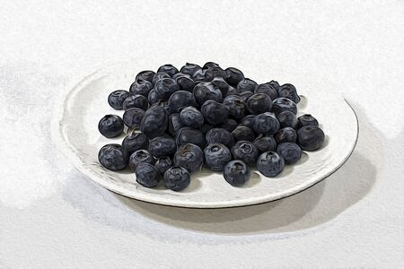 Blueberries in a white background illustration Stock Photo