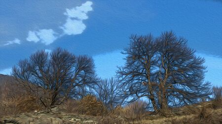 Couple of trees during the winter in a blue sky illustration