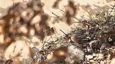 Sparrow bird in a beautiful background illustration Stock Photo