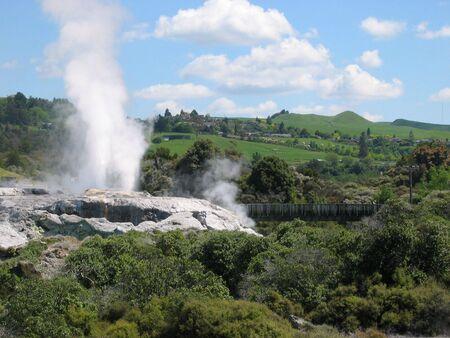 Geyser in action in Rotorua New Zealand