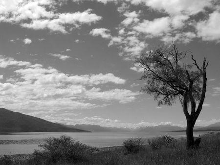 Te: Te Anau grey sky, New Zealand