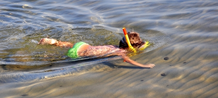 Child snorkeling looking for shells photo