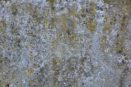 artisitc: old green dirty grunge texture