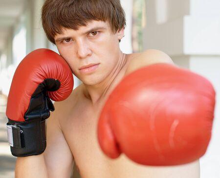 Close-up portrait of a boxer Stock Photo - 10135788