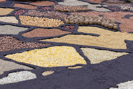 Nuts, legumes, corn mill and grains artistically laid out. Fresh produce.