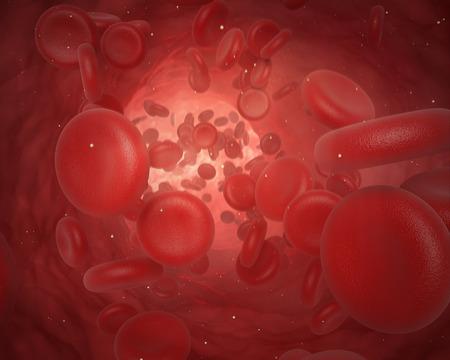 celulas humanas: Ilustración de las células rojas de la sangre en movimiento en el interior del cuerpo
