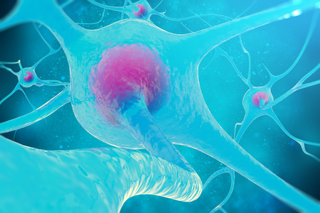 neural: Neural network, brain cells, nervous system 3d illustration