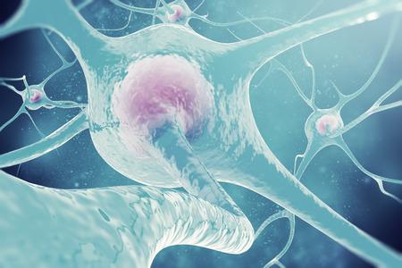 神経細胞の神経系 3 d イラストのニューロン 写真素材