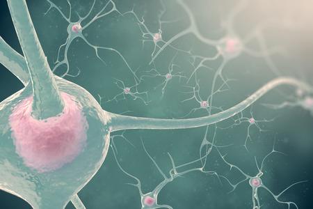 cellule nervose: I neuroni del sistema nervoso, con l'effetto di sfocatura e le cellule nervose di luce 3d illustrazione