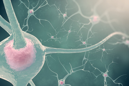 cellule nervose: The neurons of the nervous system with the effect blurring and light 3d illustration nerve cells