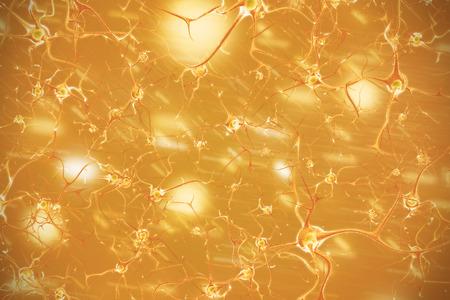 nerve signals: Nervous system. 3d illustration of brain cells