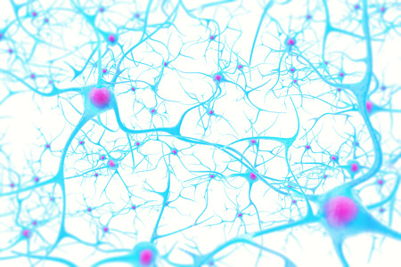 Neurons in the brain on white background with focus effect 3d illustration Stockfoto
