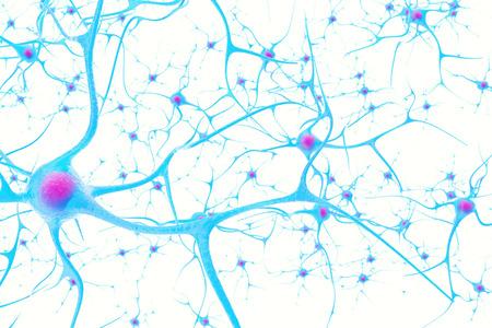 포커스 효과 3D 그림 흰색 배경에 뇌의 뉴런