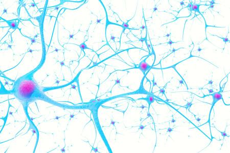 Neurons in the brain on white background with focus effect 3d illustration Foto de archivo