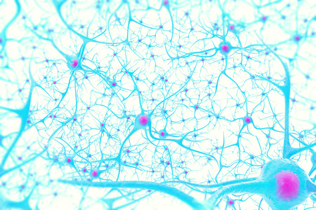 neurone: Neurons in the brain on white background with focus effect 3d illustration Stock Photo
