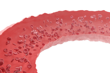 oxygenated: Red blood cells flowing through veins from the human circulatory system. 3d illustration Stock Photo