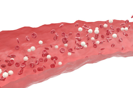 oxygenated: Red and white blood cells in cut flowing through veins, scientific and medical 3d illustration. Stock Photo