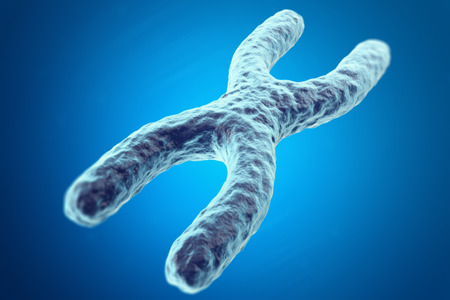 telomere: X Chromosome on blue background with focus effect, scientific concept. 3d illustration