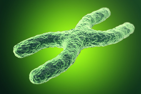 human chromosomes: X-Chromosome on green background. with depth of field effect, scientific concept. 3d illustration