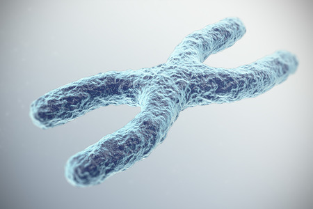 X-Chromosome on grey background. with depth of field effect, scientific concept. 3d iilustration