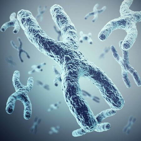 telomere: X-chromosomes as a concept for a human biology as a medical symbol for gene therapy or microbiology genetics research. 3d illustration