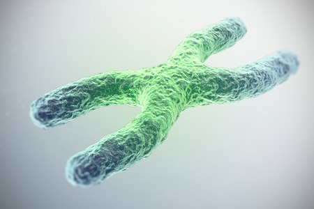 telomere: X chromosome, green in the center, the concept of infection, mutation, disease, with focus effect. 3d illustration. Stock Photo