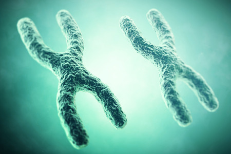 xx: XX Chromosome in the foreground, a scientific concept. 3d illustration.