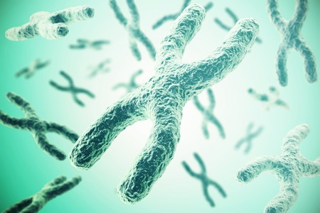 chromosomes: Chromosomes on green background, scientific concept 3d illustration.
