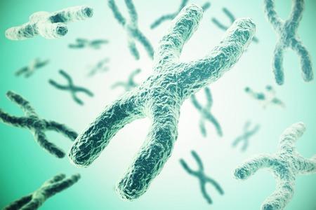 chromosome x y: Chromosomes on green background, scientific concept 3d illustration.