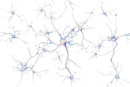 Neuronen in de hersenen op een witte achtergrond met focus effect. 3D-rendering.