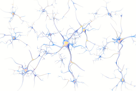 Neurons in the brain on white background with focus effect. 3d rendering.