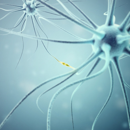 synapse: Neurons transmission signals in the head on blue background. Synapse, 3d rendering.