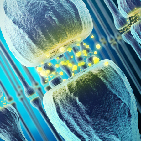 synaptic: Synaptic transmission, human nervous system, 3d rendering