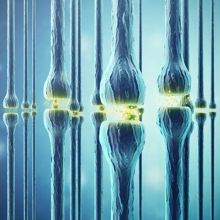 nerve signals: Synaptic transmission, human nervous system, 3d rendering