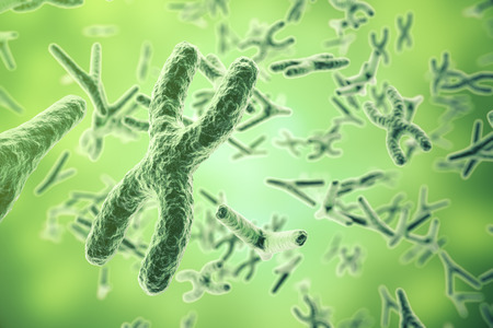 chromosomes: Chromosomes on scientific background. Life and biology, medicine scientific. 3d rendering