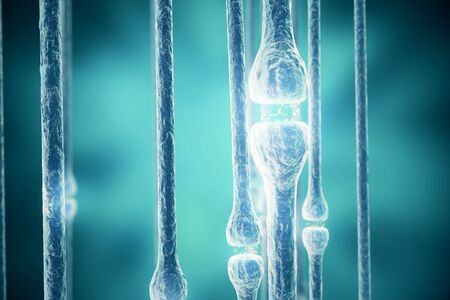 sensory receptor: Synapse and Neuron cells sending electrical chemical signals, 3d rendering