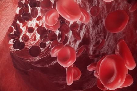 Red blood cells in vein or artery, flow inside inside a living organism, 3d rendering