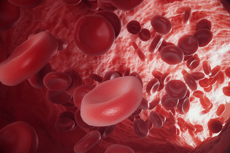 Abstract red blood cells, scientific or medical or microbiological concept, 3d rendering Stock Photo