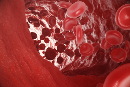 Red blood cells: responsible for oxygen carrying over, regulation pH blood, a food and protection of cages of an organism. 3d rendering Stock Photo