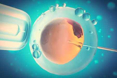 3D Illustration of artificial insemination or in-vitro fertilization of an egg cell,ovum or zygote, Concept, scientific experiment Stock Photo