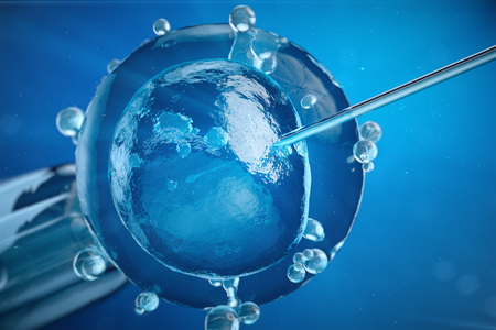 3d illustration artificial insemination, fertilisation, Injecting sperm into egg cell. Assisted reproductive treatment