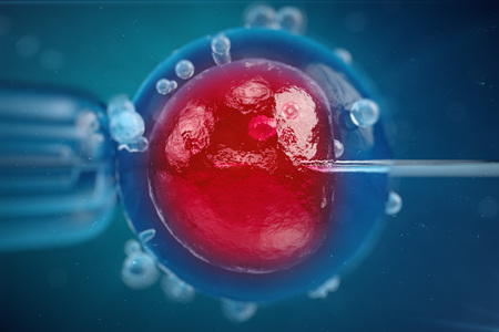 3D Illustration In vitro fertilisation , Injecting sperm into egg cell , Assisted reproductive treatment