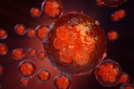 3D illustration Early stage embryo, Stem cell research, Morula. Human or animal cells. Medicine scientific concept Banco de Imagens