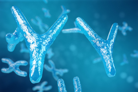3D illustration XY-chromosomes as a concept for human biology medical symbol gene therapy or microbiology genetics research