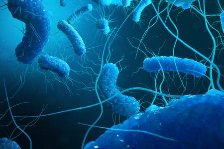 Enterobacterias Gram negativas Proteobacteria, bacteria such as salmonella, escherichia coli, yersinia pestis, klebsiella. 3D illustration Stock Photo