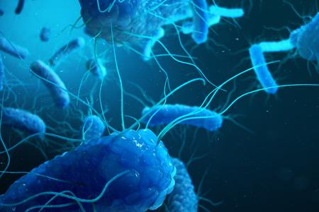 3D rendering Enterobacterias. Gram negativas Proteobacteria, bacteria such as salmonella, escherichia coli, yersinia pestis, klebsiella