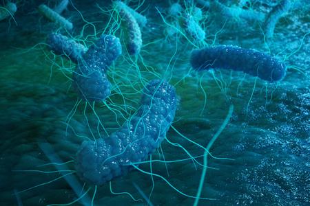 Enterobacterias Gram negativas Proteobacteria, bacteria such as salmonella, escherichia coli, yersinia pestis, klebsiella. 3D illustration Foto de archivo