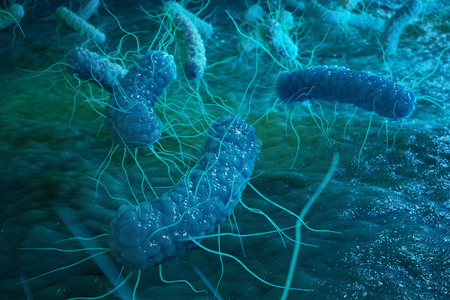 Enterobacterias Gram negativas Proteobacteria, bacteria such as salmonella, escherichia coli, yersinia pestis, klebsiella. 3D illustration Stock Photo