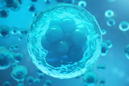3D Rendering human or animal cells on blue background. Concept Early stage embryo Medicine scientific concept, Stem cell research and treatment.